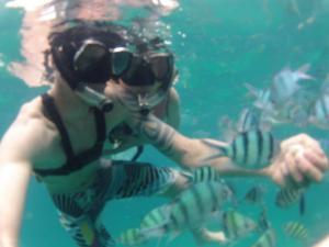 Snorkling with hundreds of fish.  Koh Kood resort